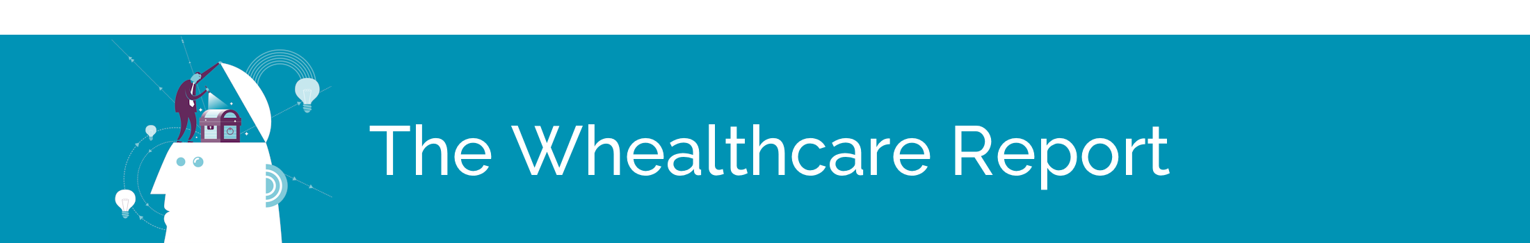 whealthcare report 13